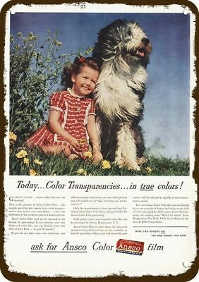 1945 ANSCO FILM Vintage Look Replica Metal Sign OLD ENGLISH SHEEPDOG DOG & GIRL