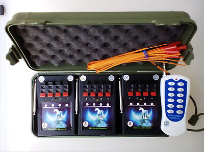 New 12Cues Profession Fireworks Firing System Wireless Remote For Party Wedding