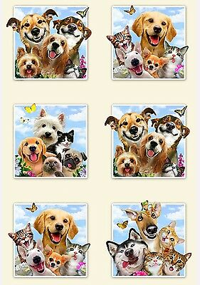 Pet Selfies Panel * Noses Smiles & Love * New * In Stock * Free Post *