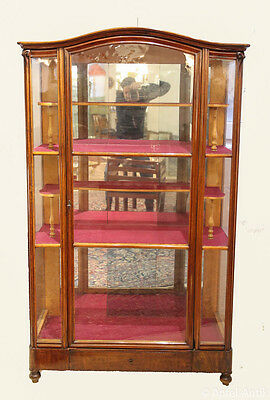 BIEDERMEIER VITRINE um 1860 - BIEDERMEIER SHOWCASE around 1860