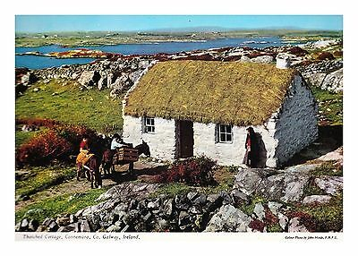 CONNEMARA THATCHED & WHITEWASHED COTTAGE Co GALWAY IRELAND - JOHN HINDE POSTCARD