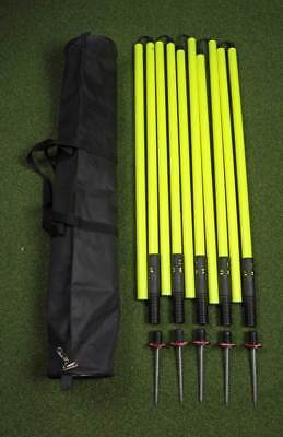 Set of 5 - 177cm Two Piece Premium Spring Base Agility Poles in Bag