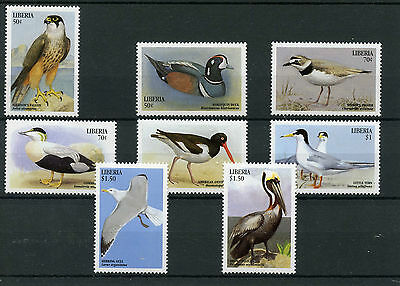 Liberia 1999 MNH Large Birds 8v Set Falcon Ducks Waders Terns Pelican Stamps