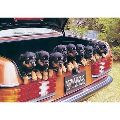 "ROTTI EXPRESS - ROTTWEILER PUPPIES 91 x 61 MM 36 x 24"" CUTE ANIMAL POSTER x"