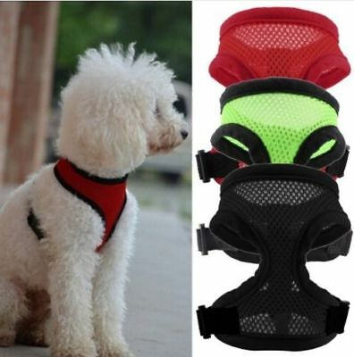 Pet Mesh Harness Strap Vest Collar Puppy Comfort Harness Cloth Dog pet HGPP015
