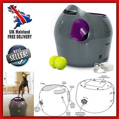 Automatic Dog Ball Thrower Tennis Launcher Outdoor Interactive Play Pet Training