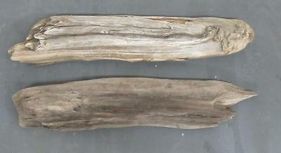 "Lot of 2 Large Flat Driftwood Pieces For Signs 3""-3.5"" x 25""-26"" SBL2-3"