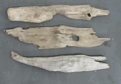 "Lot of 3 Medium Flat Driftwood Pieces For Signs 3.25""-3.75"" x 19""-21"" SBM3-1"