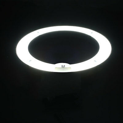 "12"" Fluorescent 40W Dimmable Ring Light for Camera Photo Studio White Light"