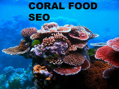Coral Reef Food SEO  for Zoanthid LPS SPS Marine supply store backlink services