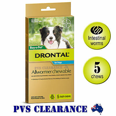 Drontal Allwormer for Medium Dogs Up To 10kg - 5 Chews - Dog Wormer Praziquantel