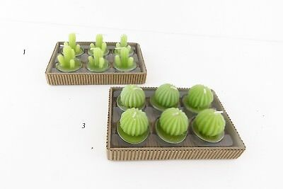 4 segnaposto candela cactus tea light wedding pianta grassa bomboniera tavolo