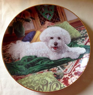 Bichon Frise Dog Collector Plate*pampered Princess*danbury Mint Limited Edition
