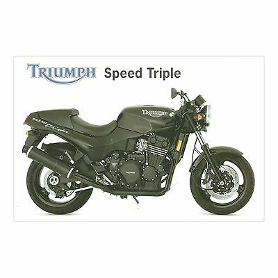 Triumph Speed Triple - By Triumph Motor Cycles Replica Racing Motorbike Postcard