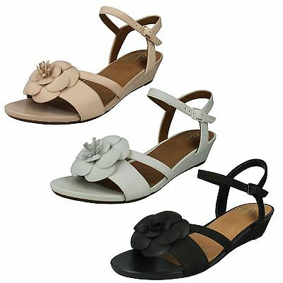 07aae59f4369 Ladies Clarks Nubuck Low Heel Wedge Floral Summer Sandals Shoes Parram  Stella