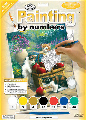 """Junior Small Paint By Number Kit 8.75""""X11.75"""" Bumper Crop PJS48"""