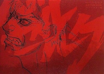 Brand New Art Book BERSERK Movie Character art collection Large book