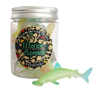 Seedling Glow in the Dark Marine Animals