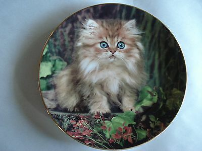 """Feline Friends Plate Collection, """"Perfect Pose"""", Princeton Gallery, 1995"""