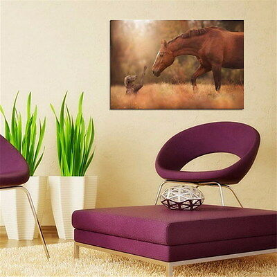 Friendship of Horse and Dog Silk Poster Fabric Nature Animal Print Wall Home Dec