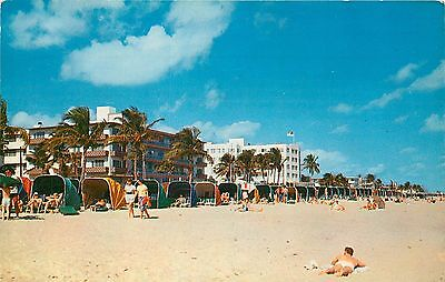 MARLIN BEACH HOTEL LARGEST GAY INTEREST RESORT Fort Lauderdale Florida  Postcard