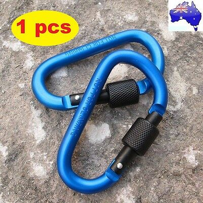 Camping Outdoor Aluminum D-Ring Screw Locking Carabiner Hook Clip Key Chain GT
