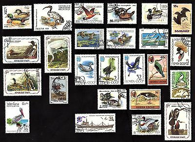 25 All Different WATER BIRDS  on Stamps