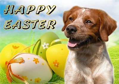 Brittany Dog Easter Design A6 Textured Card EBRITTANY-1 by paws2print