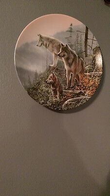 Limited Edition Wolf Plate