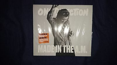 ONE DIRECTION Made in the A.M. Harry Styles cover Sign of the Times