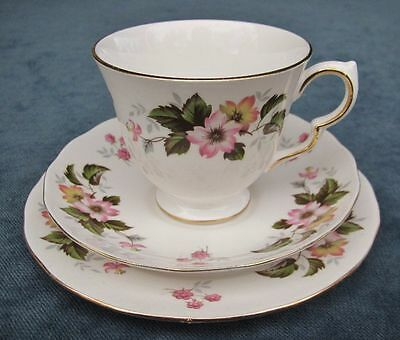 Pretty Vintage Queen Anne  Dogwood Pattern Bone China Trio