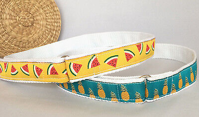 Watermelon belt, Pineapple belt for children with fruit print toddlers belt