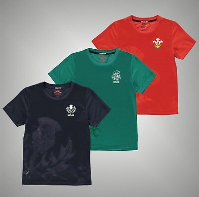 Junior Boys Branded Team Short Sleeves Large Crest Print Rugby Poly T Shirt Top