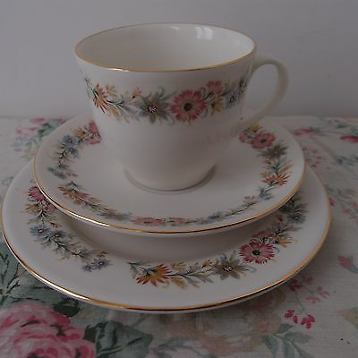 Royal Vale Trio - Similar to Paragon Belinda - Cup, Saucer & Plate (5 available)