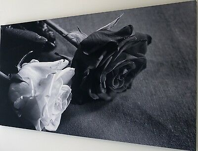 BLACK AND WHITE ROSE CANVAS ART PICTURE  LARGE 18 x 32 inch  READY TO HANG