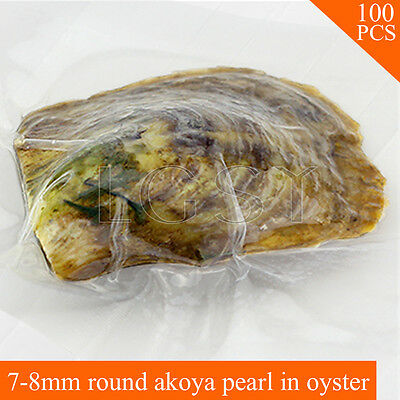 wholesale AAA 7-8mm round Akoya pearl in oysters saltwater pearl oyster