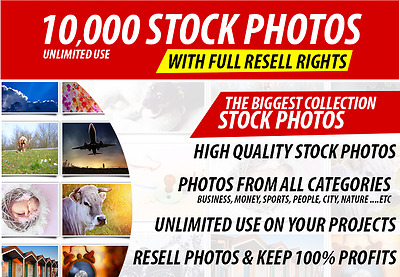 10,000 High Quality Stock Photos Collection From All Categories Unlimited Use