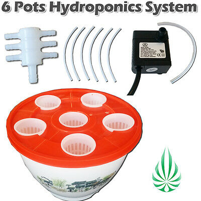Pickup Home Hydroponics System 6 pot Aeroponic auto Irragation Grow With Fish