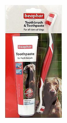 Beaphar Toothbrush & Toothpaste for All Sizes of Dogs, Liver Flavour Anti-Plaque