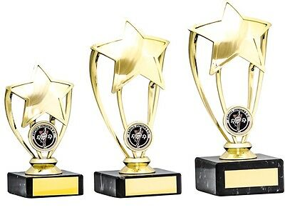 Multi Sport Trophies Gold Star Achievement School Awards 3 sizes FREE Engraving