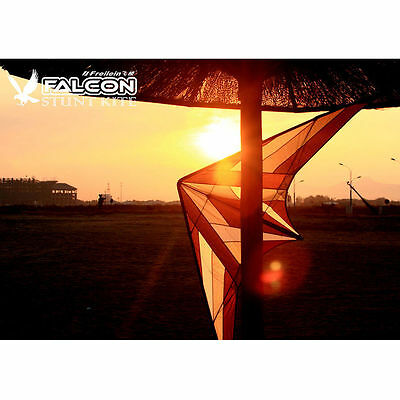 2.5m Professional Dual Line Sports Kite Stunt Kite for Wind Game Outdoor Fun