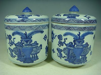 Beautiful Chinese blue and white porcelain Tea Caddies