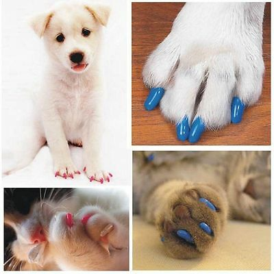 20 Pcs/set Mult-color Silicone Dog Claw Covers Cat Paw Nail Cap Pet Grooming