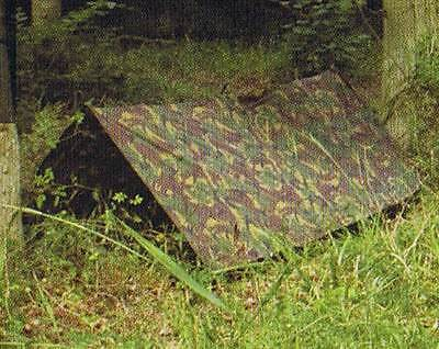 Genuine British army issue Woodland BASHA,- Tarp with stuff bag