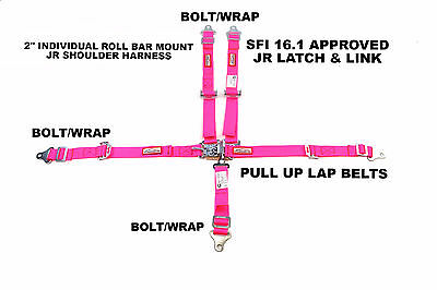Youth Racing Harness Sfi 16.1 5 Point Latch & Link Roll Bar Mount Belt Hot Pink