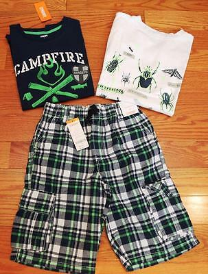 Gymboree Boys Lot of Bugs, Campfire Shirts and Shorts size 12