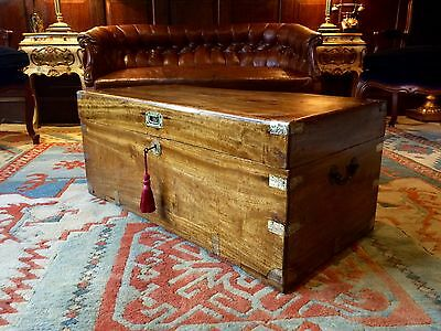 Gorgeous Antique Campaign Chest Trunk Blanket Box Victorian 19th Century Brass