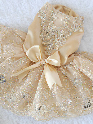 HOT Clothing For Dogs Pet Dog Clothes Lace Bow Wedding Dog Dress Champagne S