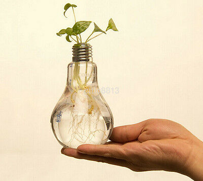 Light Bulb Stand Glass Flower Vase Pot Hydroponic Container Home Wedding hwc