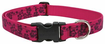 "Lupine Collars & Leads 20252 1"" X 12""-20"" Adjustable Plum Blossom Design Dog Col"